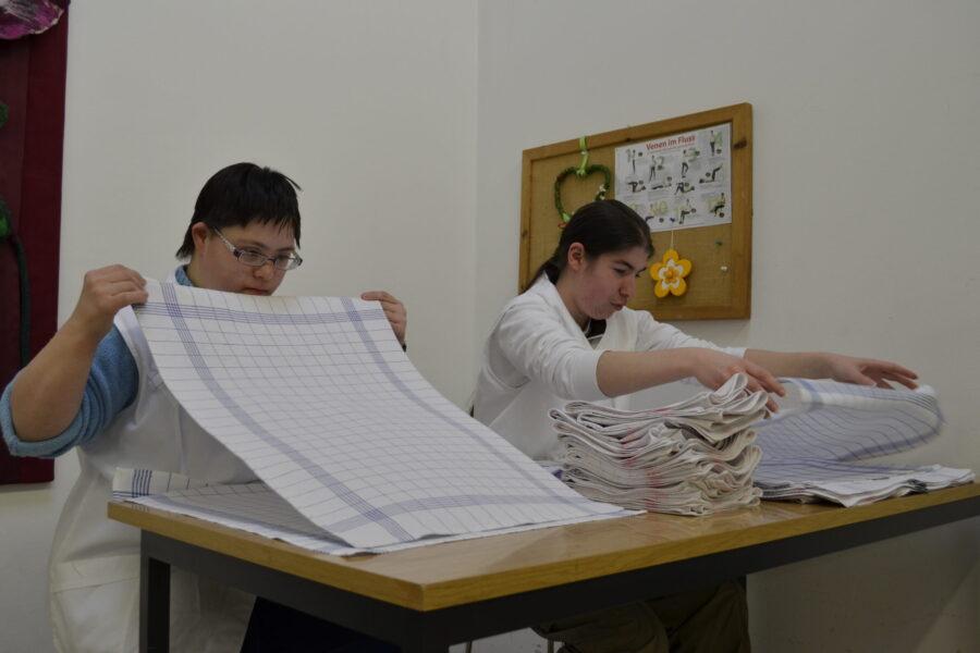 Wäscherei, Industrienäherei und Textil